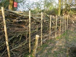 Totholzzaun, 12m lang, 2,50m hoch